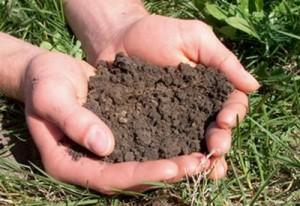 خاک در کشاورزی